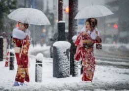 Celebrate November snow in Tokyo for the first time in 54 yearsMore Tokyo, mor…