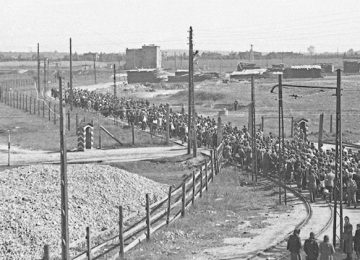 The Lodz Ghetto Photographs of Henryk Ross | AGO