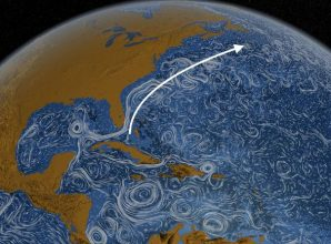 Global Ocean Circulation Appears To Be Collapsing Due To A Warming Planet