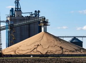 Their Soybeans Piling Up, Farmers Hope Trade War Ends Before Beans Rot
